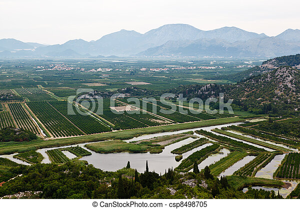 Agriculture in the Delta of River near Dubrovnik, Croatia - csp8498705