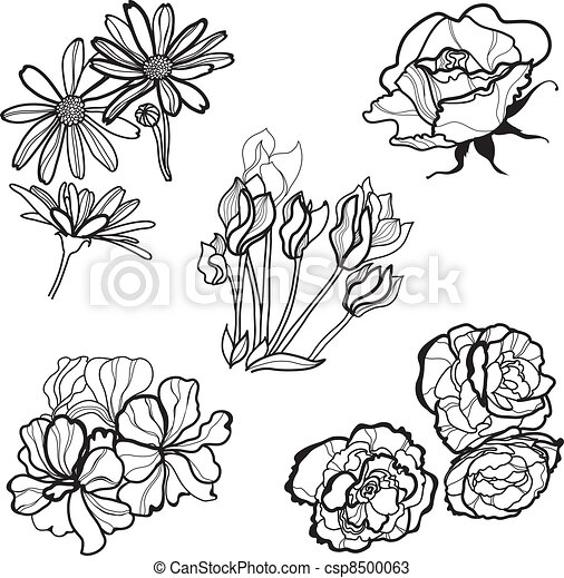 Set of flowers - csp8500063