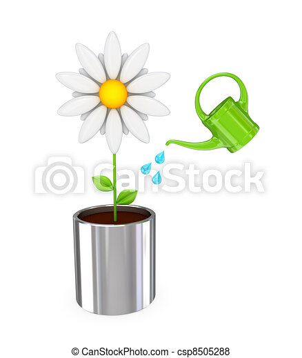 White flower in a chromed pot and green bailer. - csp8505288