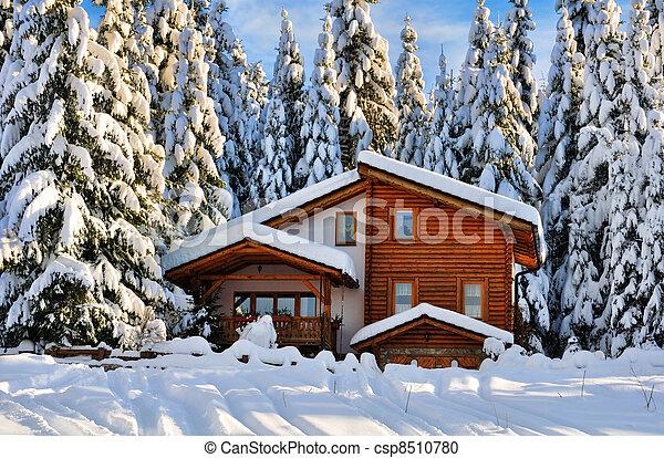stock fotografie von sch ne haus wald winter schnee. Black Bedroom Furniture Sets. Home Design Ideas