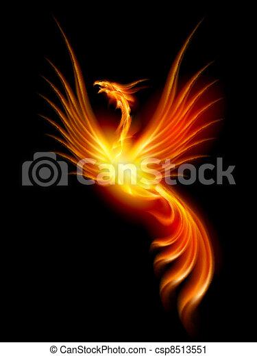 Burning phoenix - csp8513551