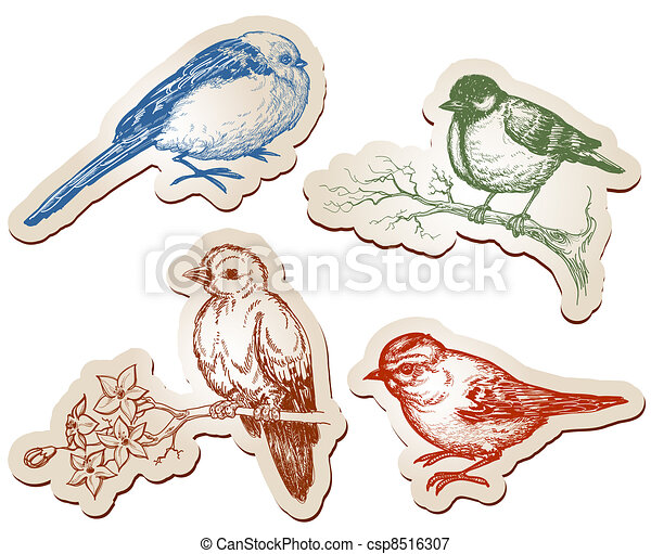 Vector birds collection - csp8516307