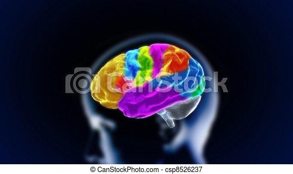 the crystal brain part11 - csp8526237