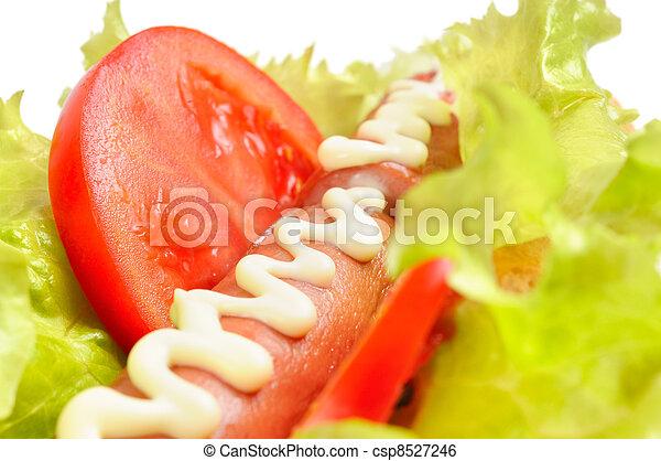 Tasty and delicious hotdog - csp8527246