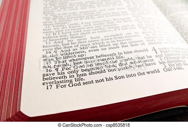 Gospel of John - csp8535818