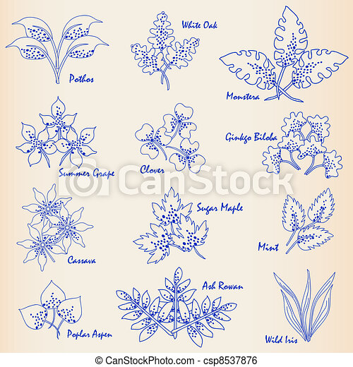 Hand Drawn Leaves Icon Set - csp8537876