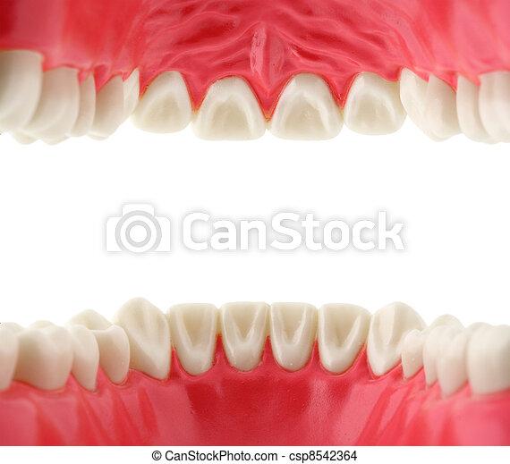 boca, con, dientes, dentro, vista - csp8542364