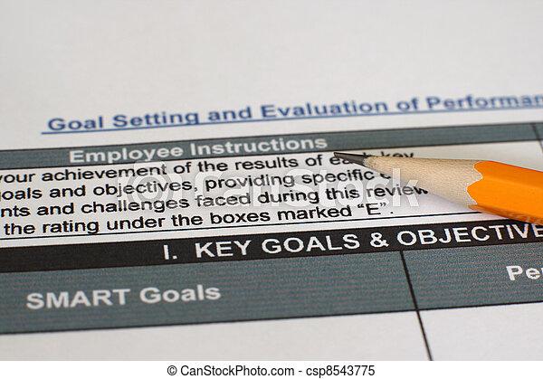 Performance evaluation form  - csp8543775