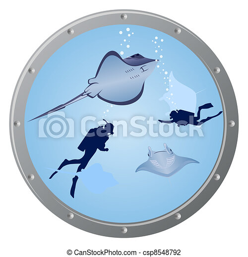 Divers and stingrays - csp8548792