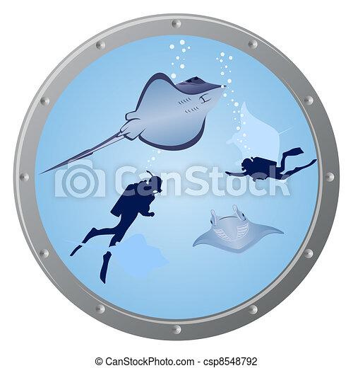 Divers and stingrays - csp8548792