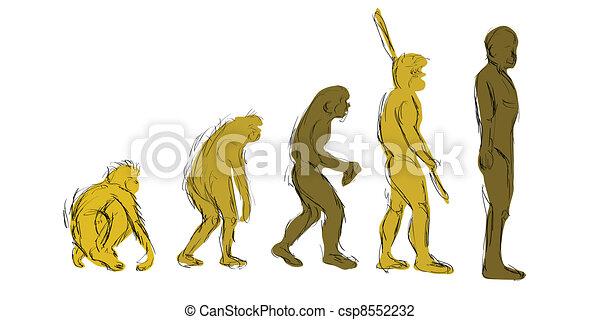 Evolution Hand-Draw - csp8552232