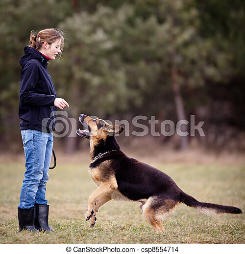 Master and her obedient  dog - csp8554714