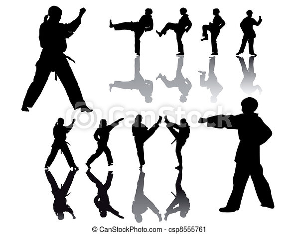 taekwondo-fighter-silhouette - csp8555761