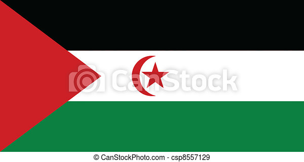 Vector illustration of the flag of Western Sahara - csp8557129