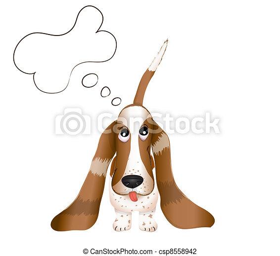 the dog Basset Hound - csp8558942