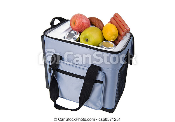 bag a refrigerator with food - csp8571251