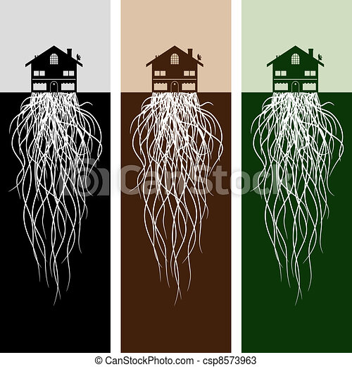 House With Roots - csp8573963