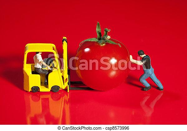 Tiny Workmen Loading Cherry Tomato - csp8573996