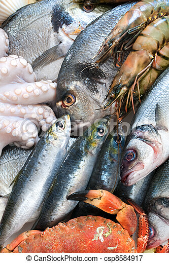 Fresh catch - csp8584917