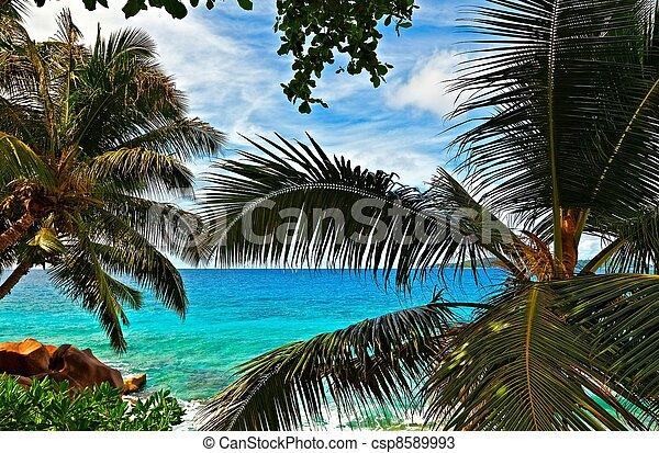 Cloudscape and seascape  view - csp8589993