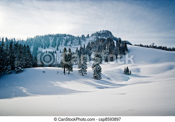 Winter landscape with forest - csp8593897