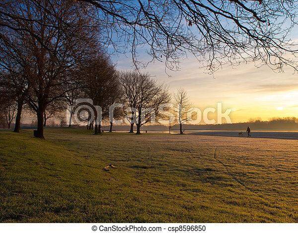 winter in dutch recreational area - csp8596850