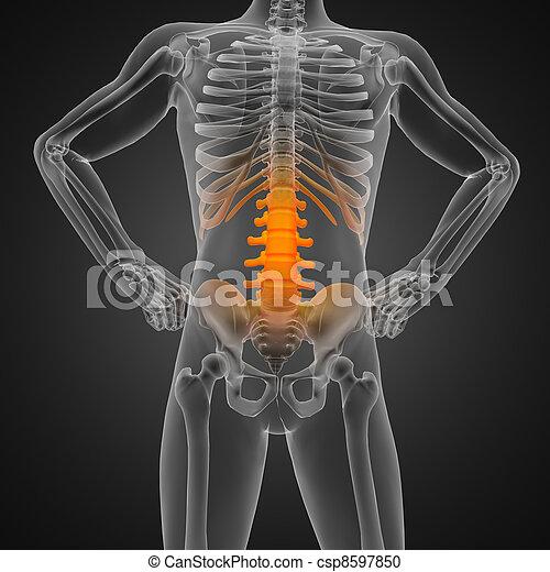 human radiography scan - csp8597850