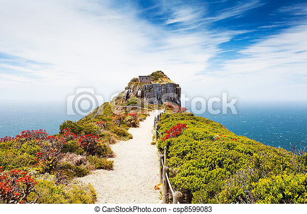 cape point nature reserve, south africa - csp8599083