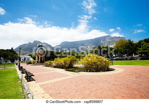 company's garden, cape town, south africa - csp8599807