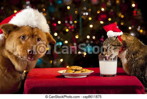 Cat and Dog taking over Santa's cookies and milk - csp8611875
