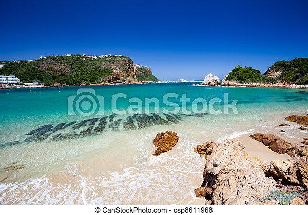 beach in Knysna, South Africa - csp8611968