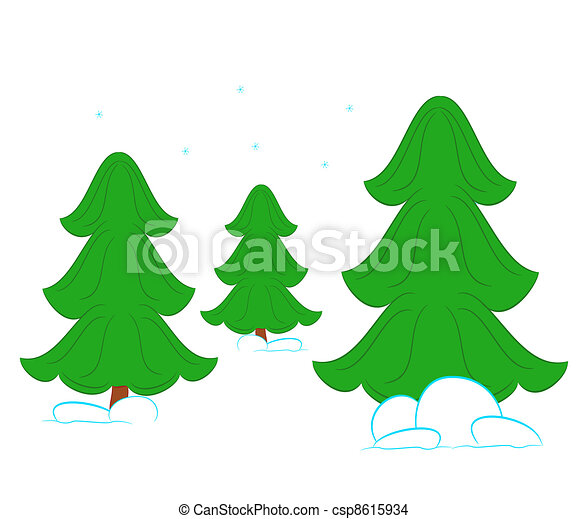 spruce in the forest  - csp8615934