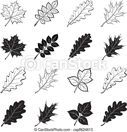 Leaves of plants, silhouettes, set - csp8624613