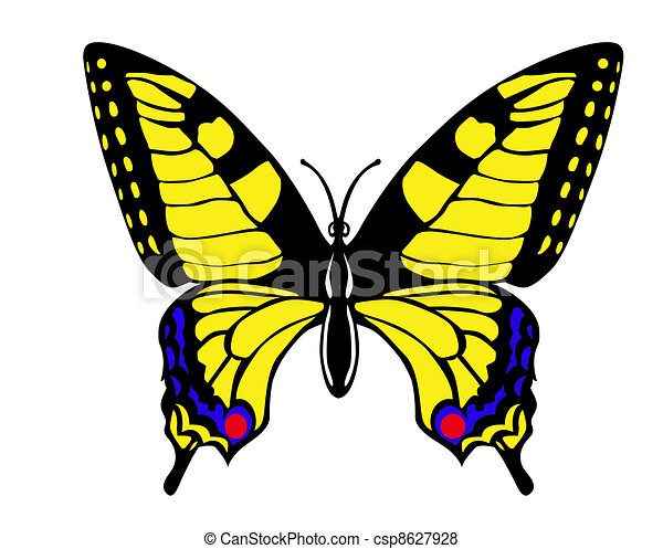 drawing butterfly swallowtail on white background - csp8627928