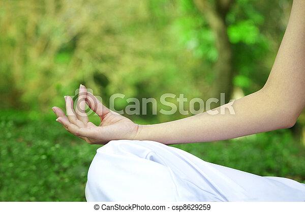 Closeup of woman hands in yoga pose - csp8629259
