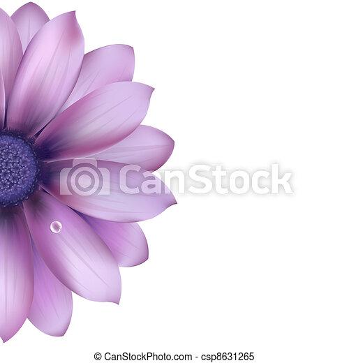 Lilac Flower - csp8631265