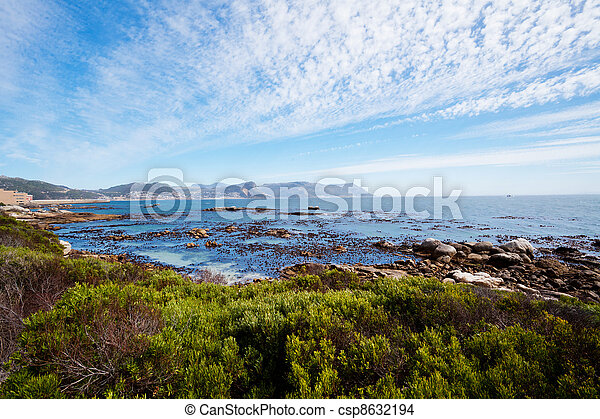 boulders beach, cape town, south africa - csp8632194