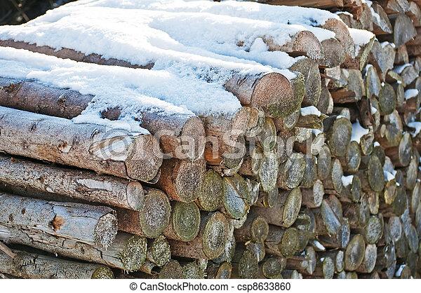 fuel-wood in wintertime - csp8633860