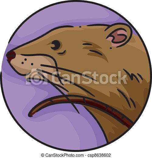 Zodiac Rat - csp8638602