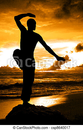 Martial Artist Silhouette with Orange Sunset - csp8640017