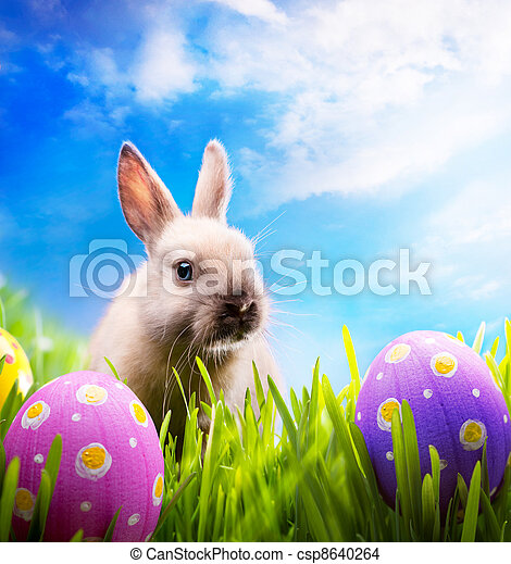 Little Easter bunny and Easter eggs on green grass  - csp8640264