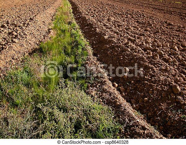 landwirtschaft - csp8640328