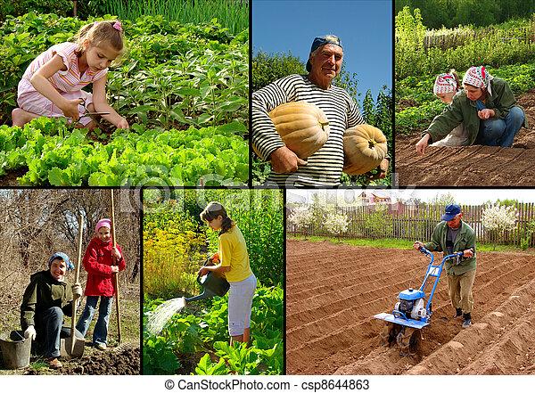 farming collage - csp8644863