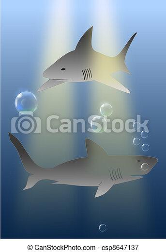 sharks in ocean  - marine predators  - csp8647137