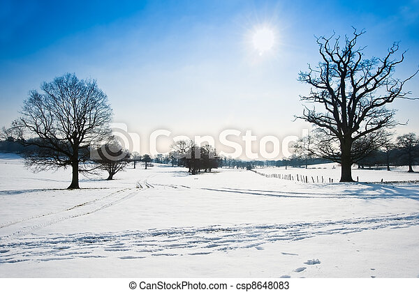 Winter rural countryside landscape on bright blue sky day - csp8648083