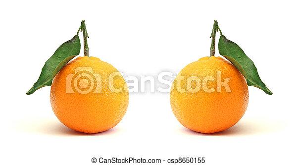 clementines - csp8650155