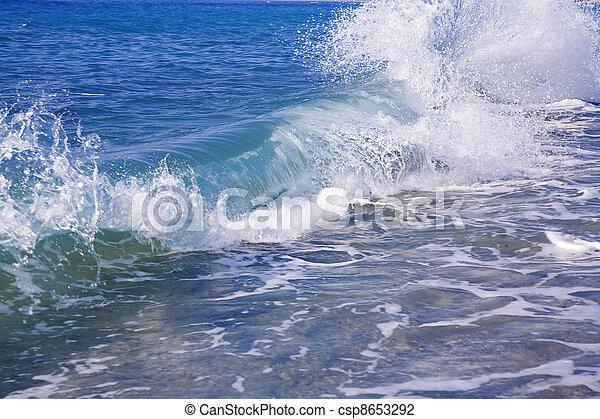 powerful blue foamy wave runs in a coast - csp8653292