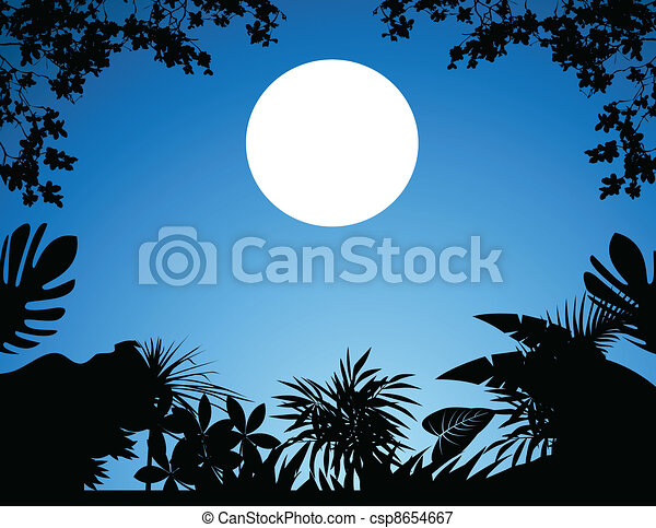 jungle at night - csp8654667
