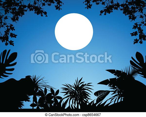 jungle at night - csp8654667