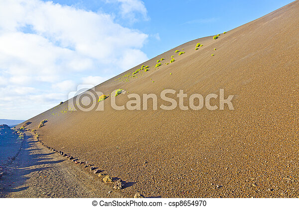 sparse vegetation on volcanic hills in Timanfaya National Park with route - csp8654970